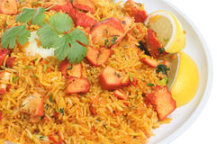 Indian Chicken Tikka Biriani Curry. Chicken tikka biriani curry with boiled egg Stock Image