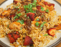 Indian Chicken Tikka Biriyani Stock Image
