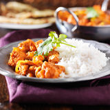 Indian chicken vindaloo curry Stock Photo