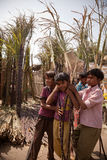 Indian children with cane sugar Royalty Free Stock Images