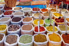 Indian colorful spices Stock Image