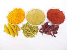 Indian cooking spices. royalty free stock images