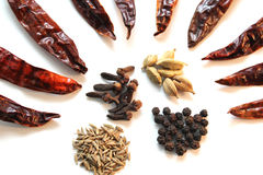 Indian cooking spices Stock Photos