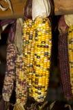 Indian Corn in barn Royalty Free Stock Photo