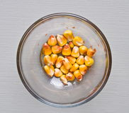 Indian corn in bowl Royalty Free Stock Photo
