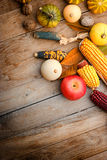 Indian corn, corn, apple and pumpkin Royalty Free Stock Image