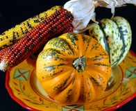 Indian corn and gourds Royalty Free Stock Photography