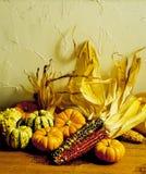 Indian Corn & Gourds Stock Photos