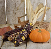 Indian Corn And Pumpkin Royalty Free Stock Images