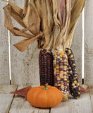 Indian Corn And Pumpkin Stock Images