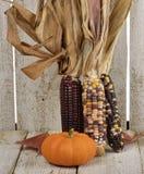 Indian Corn And Pumpkin Stock Images