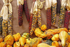 Indian corn and seasonal gourds burlap background Stock Photo