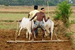 Indian countryside Stock Photos