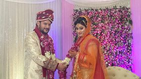 Indian couple marriage stock video