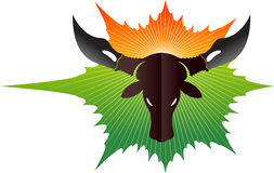Indian Cow logo Stock Photography