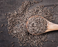 Indian cumin seeds in a spoon Royalty Free Stock Images