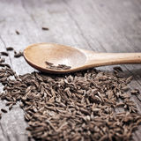 Indian cumin seeds in a spoon Royalty Free Stock Photography