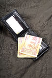 Indian currency notes. Currency notes with leather purse Stock Image