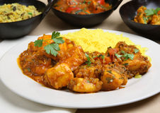 Indian Curry Dinner Stock Photography