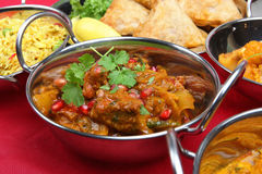 Free Indian Curry Meal Stock Photo - 5363440