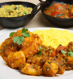 Indian Curry Selection Royalty Free Stock Photos