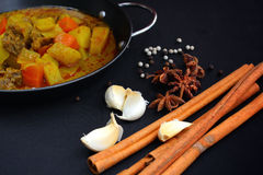 Indian curry and spices. Royalty Free Stock Image