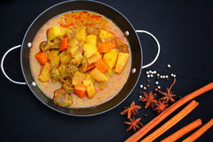 Indian curry and spices. Royalty Free Stock Photos