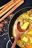 Indian curry and spices. Royalty Free Stock Photo