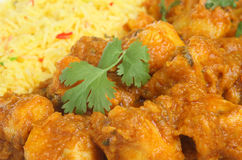 Indian Curry Takeaway Stock Images