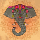 Indian decorated elephant Stock Photography
