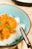 Indian dish - Chicken tikka masala served with rice and garnishe Stock Photos