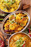 Indian dishes Royalty Free Stock Image