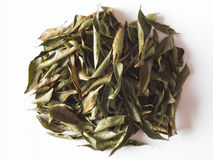 Indian dried curry leaves Royalty Free Stock Photo