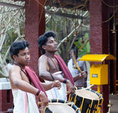 Indian drummers. KERALA, INDIA - JANUARY 15, 2016: Indian drummers playing Chenda drums during Theyyam ceremony Stock Images