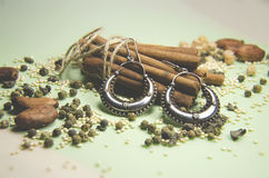 Indian earrings with seeds and cinnamon Stock Photography