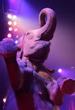 Indian elephant in a circus show Royalty Free Stock Photos