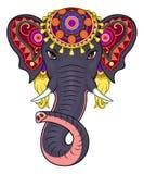 Indian elephant face Stock Photo