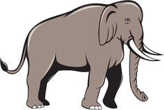 Indian Elephant Side View Cartoon Stock Images