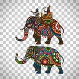 Indian elephant transparent background. Colorful indian elephant isolated on transparent background, vector illustration Royalty Free Stock Image