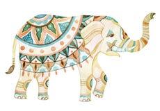 Indian elephant watercolor illustration Stock Photos