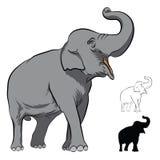 Indian Elephant  on white Royalty Free Stock Image