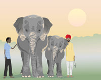 Indian elephants. An illustration of an adult and baby indian elephant with mahouts in a jungle at sunrise Royalty Free Stock Photography