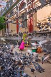 Indian family surrounded with pigeons. Two nearby vendors are ready to sell them pigeon food. Yangon, Myanmar - 21 October, 2017: Indian passerby family Stock Images