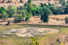 Indian farm fields and trees top arial view from the hills / mountain of a rural village of india. royalty free stock image