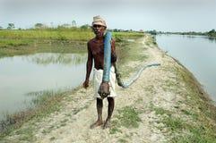 Indian farmer Stock Photography