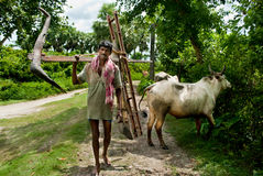 Indian Farmer Stock Image