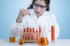 Indian female scientist doing research Royalty Free Stock Photography