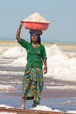 Indian female workers on salt farm Royalty Free Stock Photography