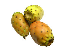 Indian fig fruit on white. Three Indian figs or prickly pears isolated on a white background Royalty Free Stock Images