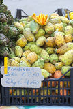 Indian Fig Opuntia Stock Photography